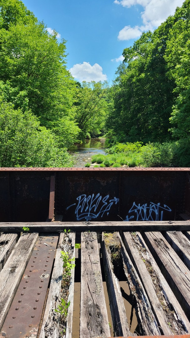 A bridge with iron sides and rotting wood timbers crosses a small creek.