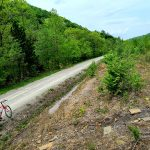The author's red bike along a wooded stretch of dirt trail
