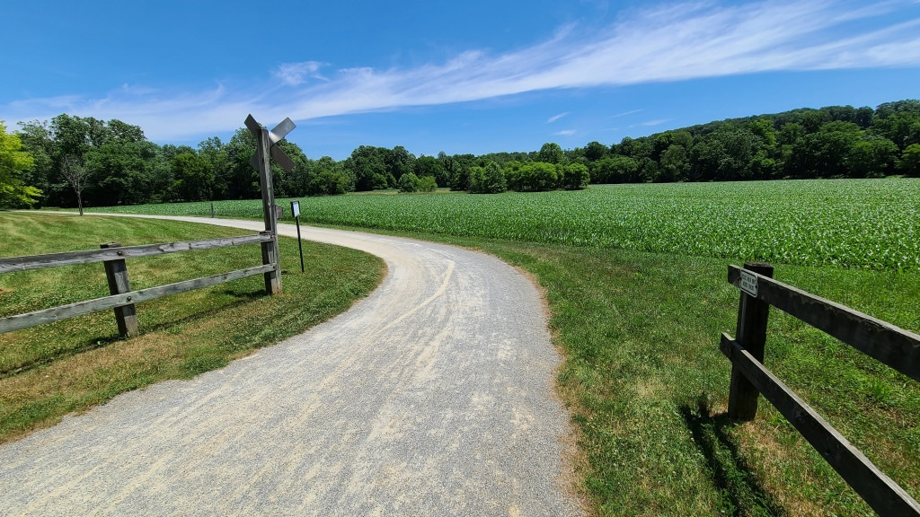 The crushed gravel bike path turns left near a field of corn. A thin whisp of clouds hang in the blue sky.