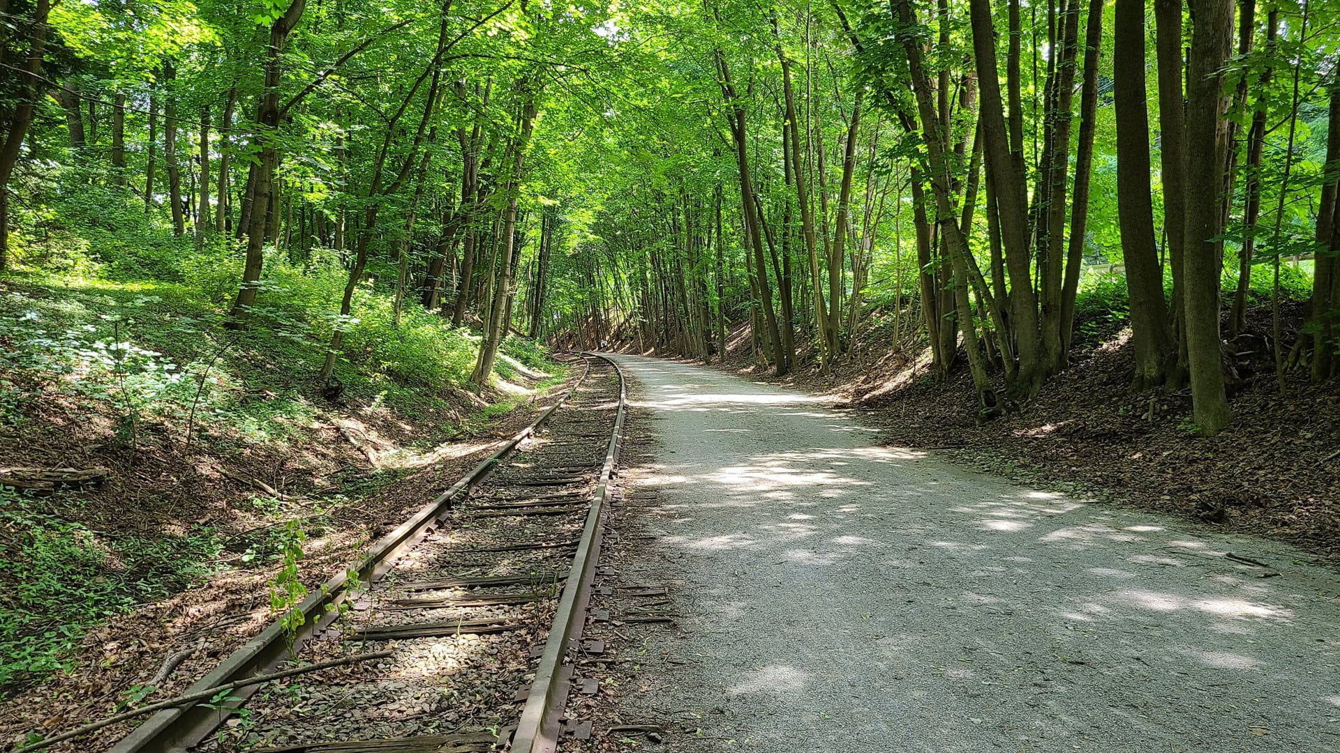 A crushed gravel trail runs alongside a railroad through the woods. The trail bends to the left in the distance.