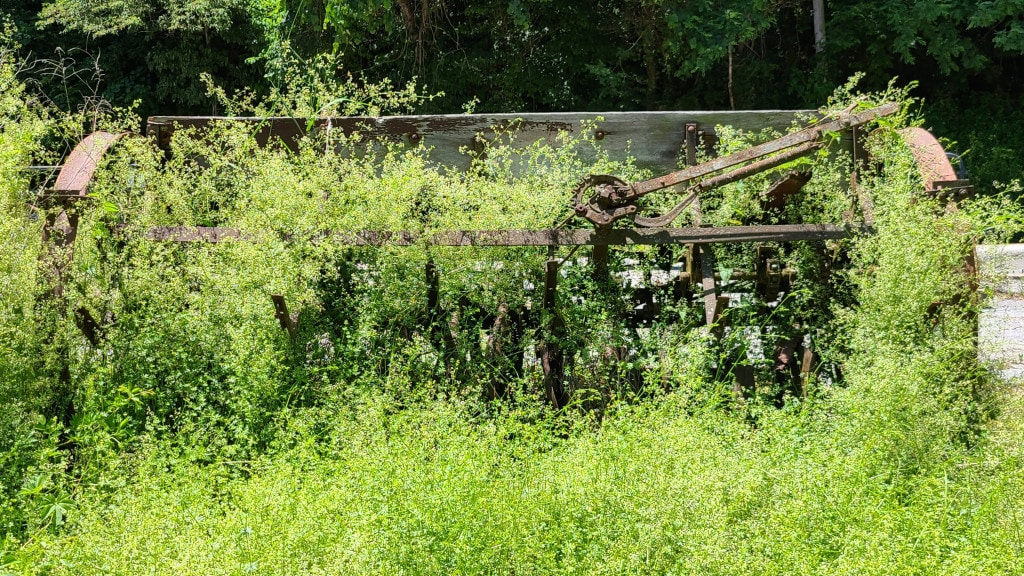 An old rusty piece of farm equipment is overrun with weeds