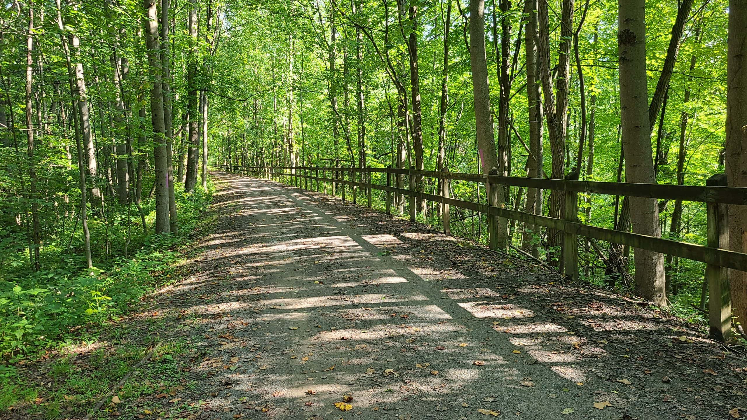 The trail bends to the left through a sunny forest. A wooden fence lines the right side of the trail.